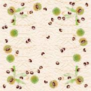 Tischdecke aus Linclass Pearl-Coating TOBI 80 x 80 cm