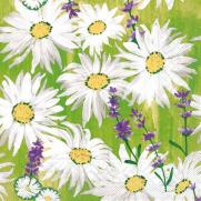 Tissue-Serviette NADINE 40 x 40 cm