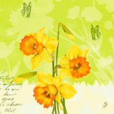 Duni-Klassik-Serviette SPRING FLOWERS 40x40 cm; 300 Stück im Karton