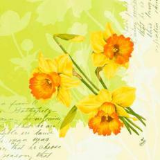 Dunilin-Serviette SPRING FLOWERS 40x40 cm; 250 Stück im Karton