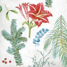 Linclass-Serviette AMARYLLIS 40 x 40 cm