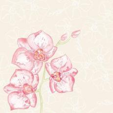 Linclass-Serviette Shija (Orchidee) 40 x 40 cm