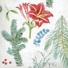 Tissue-Serviette AMARYLLIS 40 x 40 cm