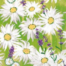 Tissue-Serviette NADINE 33 x 33 cm