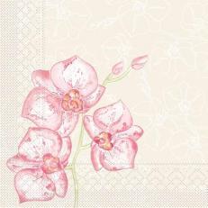 Tissue-Serviette Shija (Orchidee) 40 x 40 cm